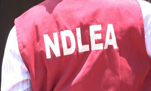 Rivers and Ondo command, state agency director, Babafemi, NDLEA intercepts in Rivers