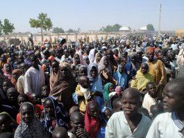 Fake IDPs