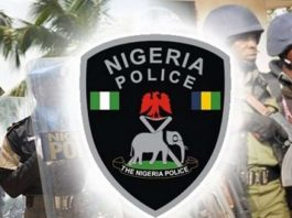 police arrest cattle rustlers, arrested four suspected cattle rustlers, 208 animals, Katsina, police arrest cattle rustlers, suspected fraudsters, defrauding with fake alerts, PoS operators, Police arrest, Olayide Olumide and Oluwemimo Adeyanju, arrested for fake alerts, party members, Oyo State local government election, police to deploy 9,000 officers, officers for Oyo election, attack on a police station in Abakaliki, Ebonyi State, kill an inspector, Gunmen kill Ebonyi inspector, secure Oyo LG election, police to secure, forthcoming local government council elections, Police arrest four suspects, Iskilu Wakili, kidnapped and murdered a six-year-old child, Police Command in Kaduna State