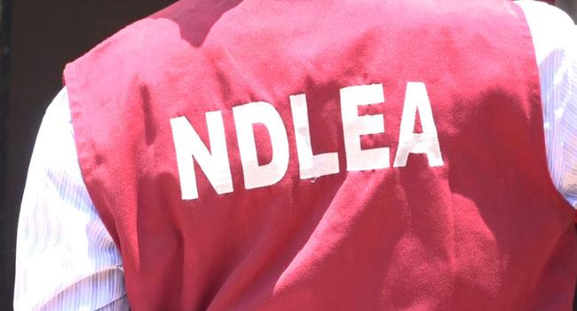 NDLEA arrests Uber driver, 97 wraps of cocaine, a suspected drug trafficker, Chigbogu Obiora, at the Murtala Muhammed International Airport, Ikeja, Lagos, NDLEA arrested drug trafficker,