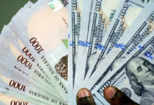Naira sustains fall at parallel market, N493 per dollar, Dollar hits N530, Pound plunges to N720, scarcity of foreign exchange, Central Bank of Nigeria