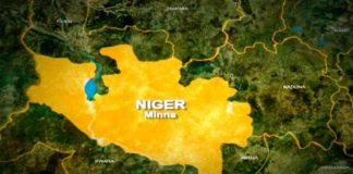 boat capsizes in Niger, boat mishap in Niger, 65 bodies recovered, 28 dead